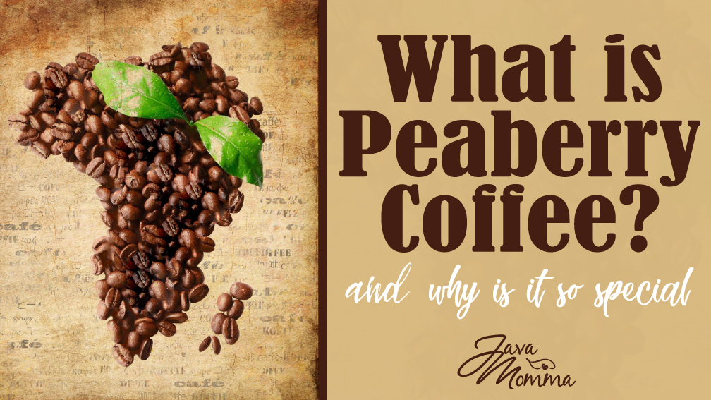 What is Tanzania Peaberry Coffee and Why You Need to Try It